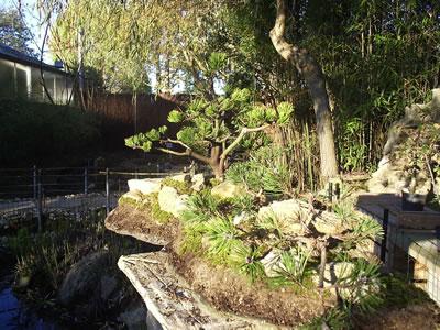 jardin21.jpg