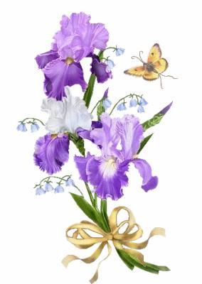 fleursiris1.jpg