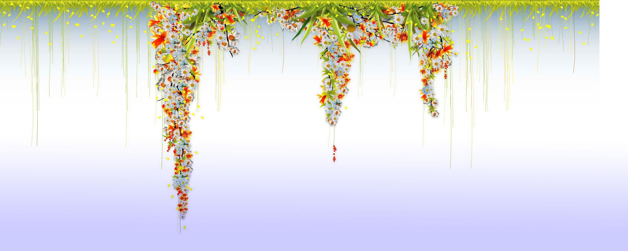 arrireplanplantes.jpg