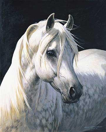 cheval4.jpg