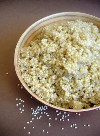 quinoacuit01.jpg