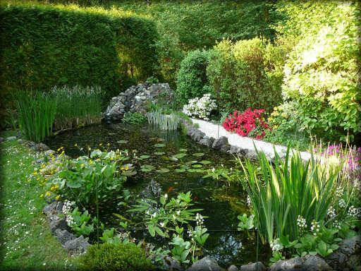jardindeau.jpg