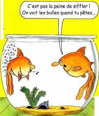 humour01.jpg