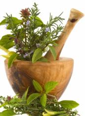 phytotherapieplantesmedicinales6.jpg